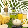Spa and Aromatherapy - 