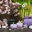 Spa Scene — Stock Photo #21756499