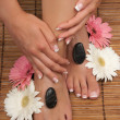 Stockfoto: Pedicure and Manicure