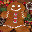 Gingerbread Man — 图库照片 #37079749