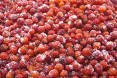 Ashberry macro — Stock Photo