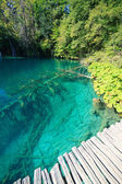 Plitvice parc national plitvice — Photo