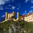 Hohenschwangau Castle — Stock Photo #35962679