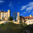 Stock Photo: Hohenschwangau Castle