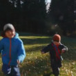 Two little boys playing on the park — Stock Video #14761269
