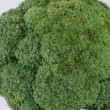 Broccoli — Stock Video #15719169