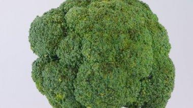 Broccoli — Stock Video #15719169
