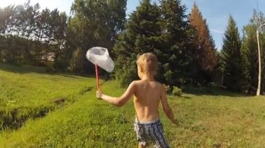 Little boy catches a butterfly on a hot sunny day. — Stock Video