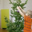 Children decorate a Christmas tree — Stock Video