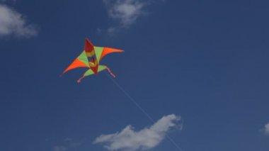 Aquiloni che volano nel cielo — Video Stock
