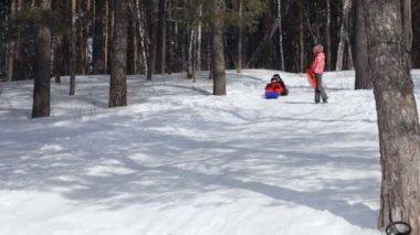 Enfants glissant dans la neige depuis la colline — Vidéo