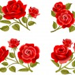 Stock Vector: Rose buttonholes