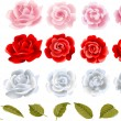 Roses set — Vettoriali Stock