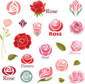 Set of rose flower design elements — Vecteur