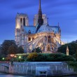 Notre Dame de Paris. — Stock Photo #13338579