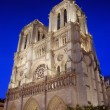Notre Dame de Paris. — Stock Photo #14295729