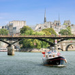 Seine. — Stock Photo #15658761