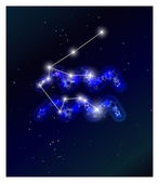 Horoscope and zodiac constellation on the starry sky — Stock Vector
