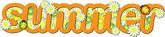Orange word Summer — Stock Vector