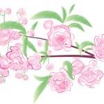 Постер, плакат: Flowering branch