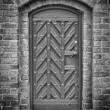Church Door Monochromatic 02 — Stock Photo #18609841