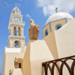 Fira catholic cathedral 05 — Stock Photo