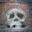 Royalty-Free Stock Photo: Stone Skull