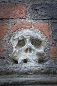 石の頭蓋骨 — ストック写真
