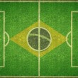 Brazil Football Soccer Pitch — Стоковое фото