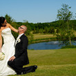 Wedding - Groom on knee - Stockfoto