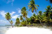 пляж рая — Стоковое фото