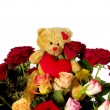 Stock Photo: Teddy bear and roses