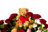 Teddy bear and roses — Stock Photo