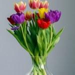 Постер, плакат: Tulips