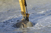 Dredging harbor with excavator — Stock Photo