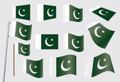 Flag of Pakistan — Stock Vector