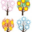 Tree during four seasons — Stock Vector