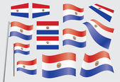 Flag of Paraguay — Stock Vector