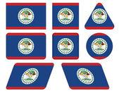 ベリーズの国旗を持つボタン — ストックベクタ