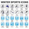 Winter sports icons — Stock Vector #28927321