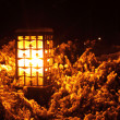 Lantern in park — Stock Photo #29976969