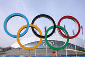 Olympic rings in front of Ice Dome Bolshoy — Stock Photo