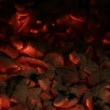 Hot coals close — Stock Video #34526009