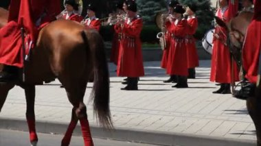 Horses and horse riders on the street — Vídeo de Stock