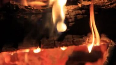Flame on  charred woods — Stock Video