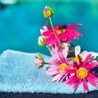 Silk flowers near swimming pool - Stock Photo