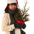 Winter girl with hat Santa Claus — Stock Photo #12864998