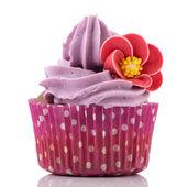 Mor renkli tek cupcake — Stok fotoğraf