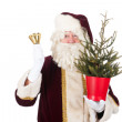 Santa Claus with Christmas tree — Stock Photo #16291523