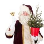 Santa Claus with Christmas tree — Stock Photo